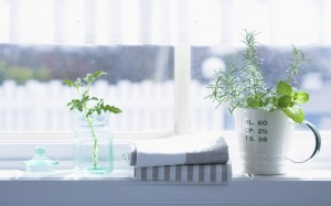 Interior_herb_HQ148